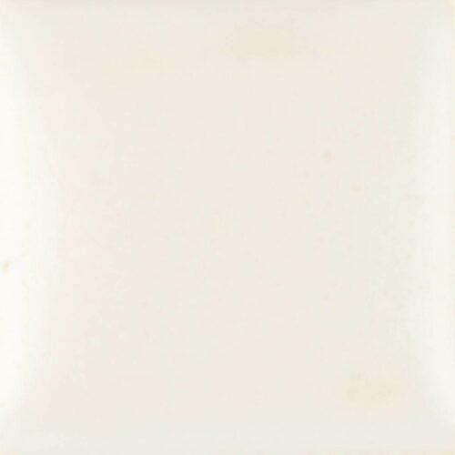 SN352 16OZ WHITE