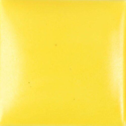 SN374 16OZ NEON YELLOW