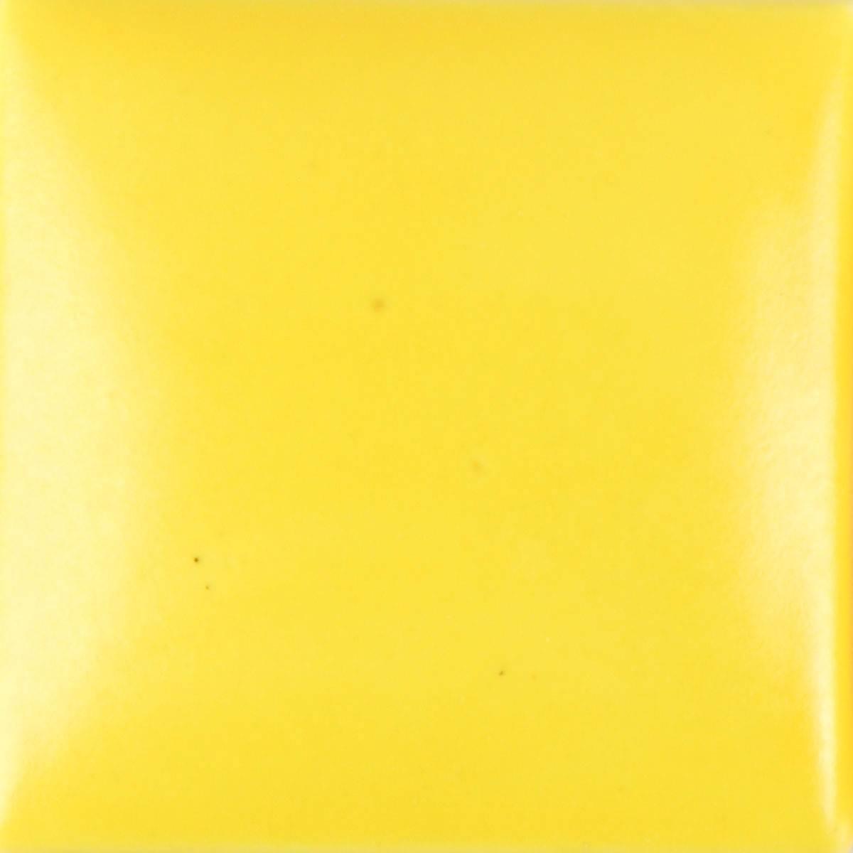 SN374 4OZ NEON YELLOW