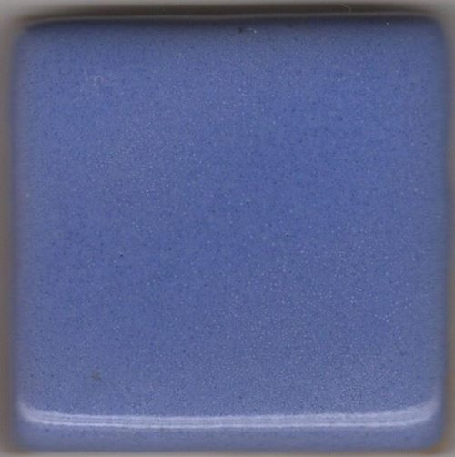 Coyote Blue Moon Blue Overcoat 25 LB Dry