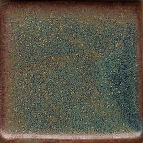 Coyote Andromeda 25 LB Dry