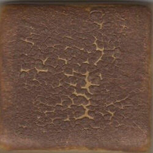 Coyote Chocolate Crawl 5 LB Dry