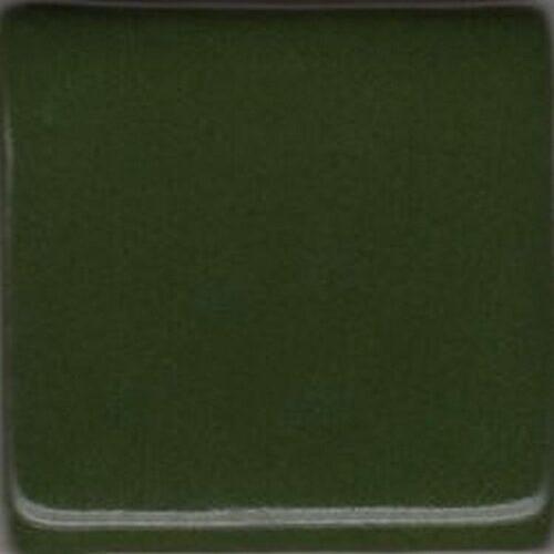 Coyote Chrome Green 1 Gallon