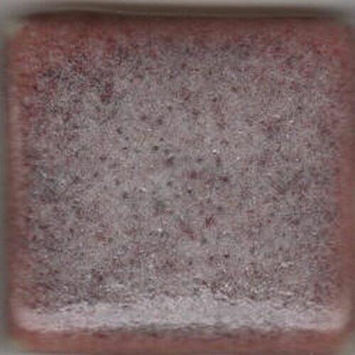 Coyote Snowy Plum 10 LB Dry