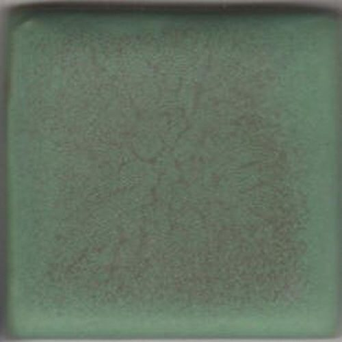 Coyote Green Matt 5 LB Dry