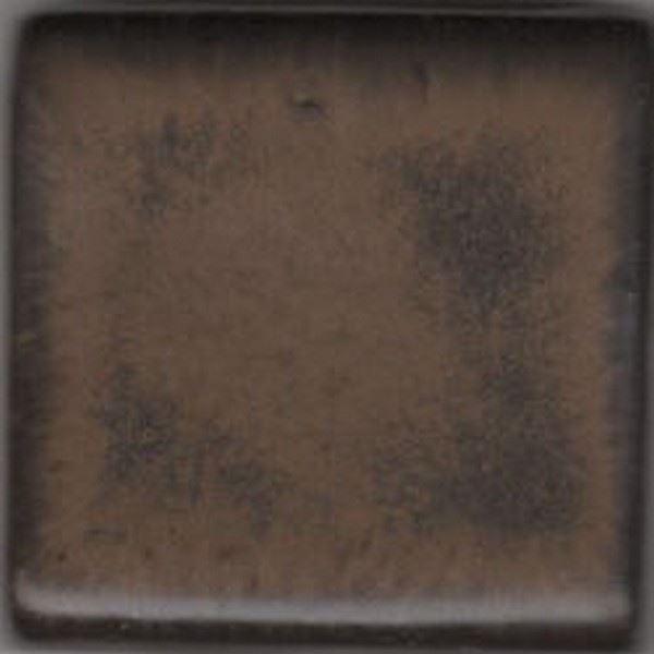 Coyote Espresso Bean 5 LB Dry