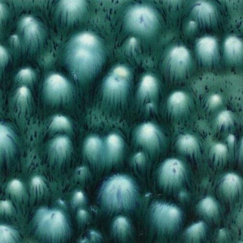 MAYCO Bloomin Blue 4 oz