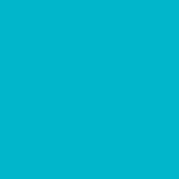 MAYCO Turquoise 2 oz